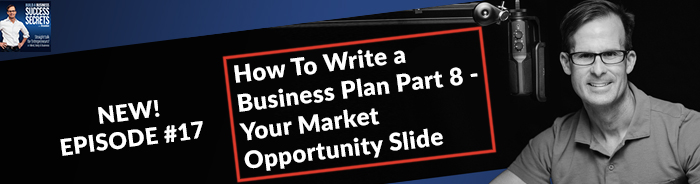 How To Write a Business Plan Part 8 - Your Market Opportunity Slide: NEW! Business Podcast